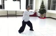 散手上手「左劈身捶、撤步左打虎」示範(正面錄影)