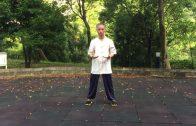 秘宗拳/迷蹤拳-太極拳表演方式的演練