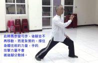 練拳時後腳尖、後膝、與前腳位置講解