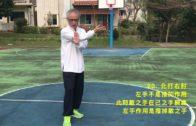 2017 散手對練 李國光/黃國治 v2